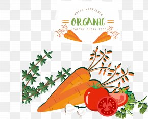 Vegetable Food - Fruit Vegetable Food Tomato Carrot PNG