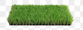 Landscape Green - Italgreen SpA Lawn Artificial Turf Garden Carpet PNG