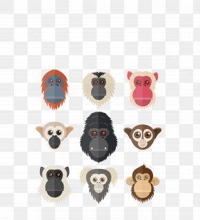 Vector Color Monkey Face Nine Cartoon - Gorilla Orangutan Primate Chimpanzee PNG