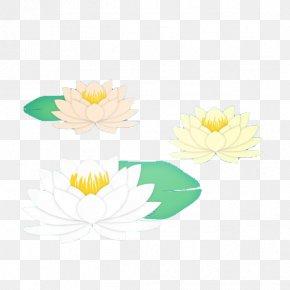 Lotus - Floral Design Yellow Petal Pattern PNG