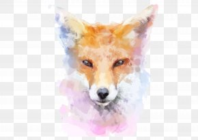 Hand Painted Fox - Fox Watercolor Painting Stock Illustration Illustration PNG