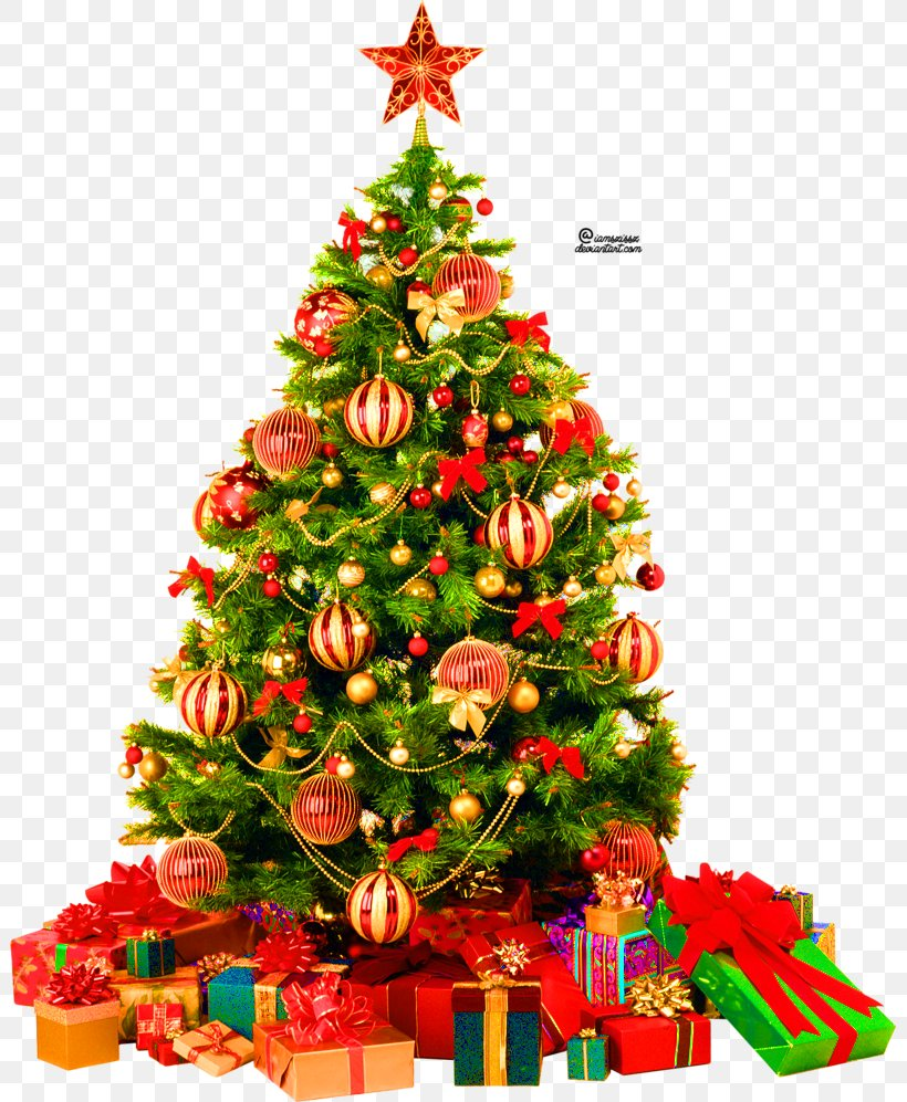 Christmas Tree Clip Art, PNG, 801x997px, Christmas Tree, Artificial Christmas Tree, Christmas, Christmas Decoration, Christmas Ornament Download Free
