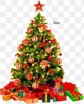 Christmas Present - Christmas Tree Clip Art PNG