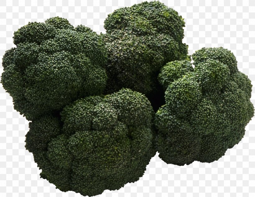 Sour Organic Food Bitter Taste, PNG, 1858x1438px, Organic Food, Bitterness, Broccoli, Diet, Eating Download Free