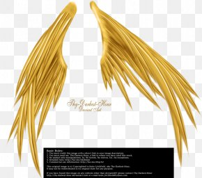 Golden Wings - Wings Of Madness Drawing Photography Black And White PNG