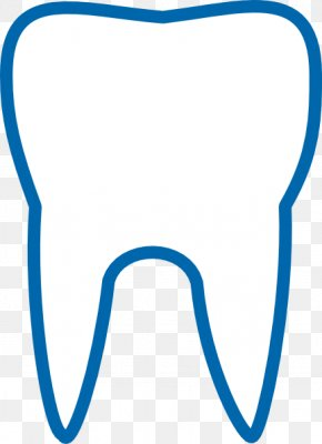 Tooth Outline - Human Tooth Dentistry Tooth Fairy Clip Art PNG