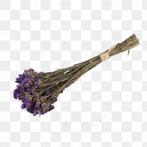 Purple Lavender - Lavender Purple Euclidean Vector PNG