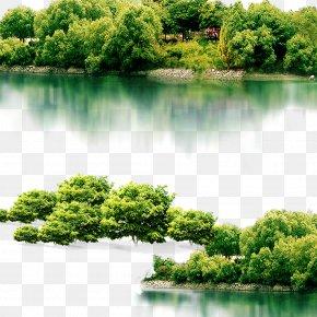 Trees Lake - Putuo District, Zhoushan Lake Icon PNG
