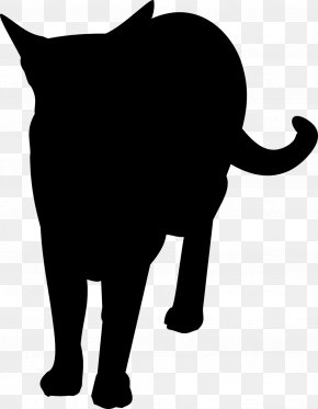 Cat - Cat African Elephant Whiskers Mammal PNG