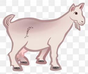 Goat - Boer Goat Angora Goat Anglo-Nubian Goat Clip Art PNG