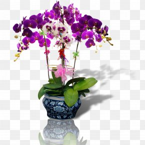 Purple Vase - Flower Bonsai PNG