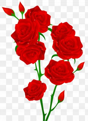 Red Roses Transparent Clip Art Image - Red Rose Flower Clip Art PNG