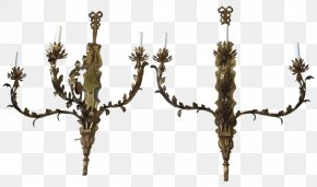 Continental Decoration - Tree Branch Twig Wood Plant Stem PNG