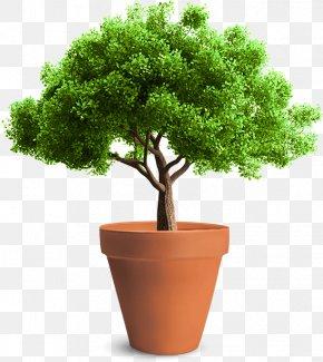 Flower Pot - Tree Planting Arborist Sketch PNG