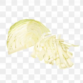 Cabbage Silk - Cabbage Vegetable Food PNG