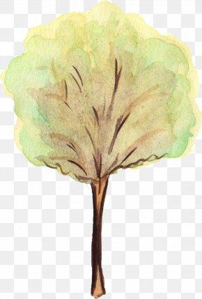 Watercolor Tree - Tree Leaf Watercolor Painting PNG