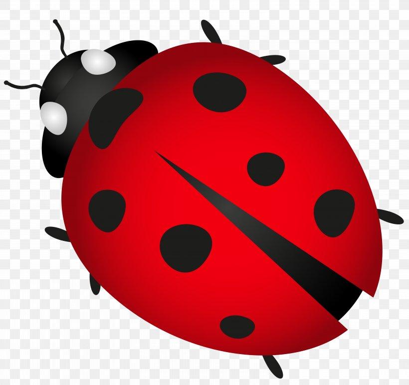 Clip Art, PNG, 6000x5653px, Beetle, Animation, Clip Art, Fruit, Grasses Download Free