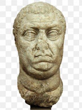 Ancient History - Vitellius Roman Emperor Ny Carlsberg Glyptotek 24 September 22 December PNG