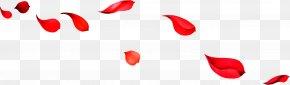 Falling Red Rose Petals - Beach Rose Red Download Wallpaper PNG