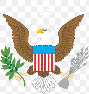 American Eagle - Great Seal Of The United States Bald Eagle Coat Of Arms Flag Of The United States PNG