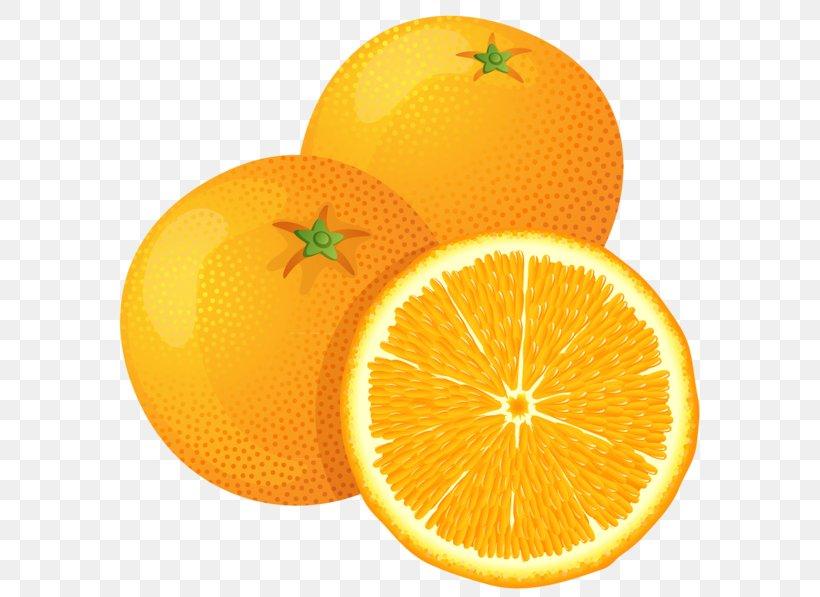 Juice Fruit Orange Clip Art, PNG, 600x597px, Juice, Art, Bitter Orange, Citric Acid, Citron Download Free