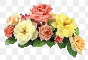 Roses Image - Image File Formats Lossless Compression PNG