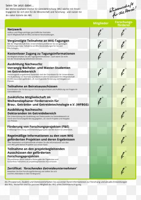 Fabruary 14 - Paper Green Document Screenshot Font PNG