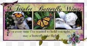 Butterfly - Brush-footed Butterflies Butterfly Song Dizigotiniai Dvyniai My Darkest Days PNG