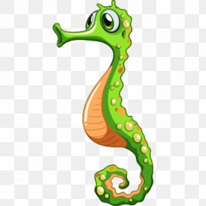 Seahorse Vector Graphics Drawing Royalty-free Illustration PNG