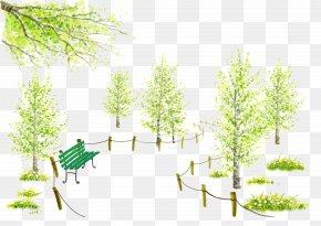 Park Bench - Bench Cartoon Park Illustration PNG