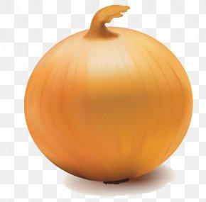 Onion Vector Transparent - Yellow Onion Jack-o-lantern PNG