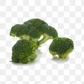 Vegetables Broccoli - Broccoli Vegetable Cauliflower Chinese Cabbage PNG