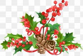 Christmas Fruit Leaf Material PNG