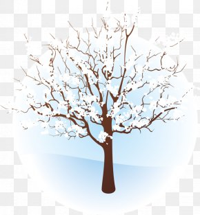 Tree Branches - Tree Winter Branch Clip Art PNG