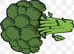 Cartoon Celery - Broccoli Vegetable Cartoon Royalty-free Clip Art PNG