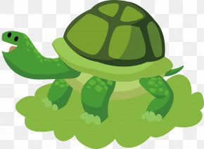 Turtle Vector - Birthday Cake Wish Birthday Card Greeting Card PNG