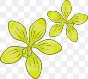 Green Floral Vector Pattern - Euclidean Vector Clip Art PNG