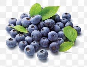 Blueberry - Juice Blueberry Frutti Di Bosco Flavor Electronic Cigarette Aerosol And Liquid PNG
