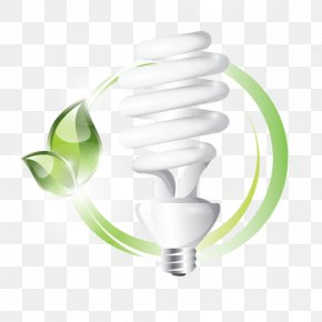 Energy Efficiency - Incandescent Light Bulb Energy Conservation Energy Saving Lamp Compact Fluorescent Lamp PNG