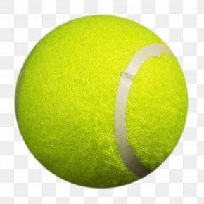 Tennis Ball - Tennis Ball Cricket Ball Green PNG