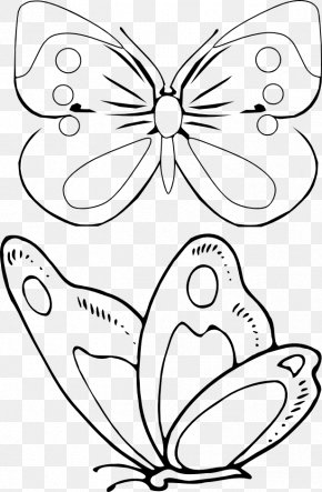 Butterfly - Coloring Book Drawing Document Information PNG