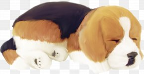 Sleeping Puppy - Beagle Pug Puppy Dog Breed Cat PNG