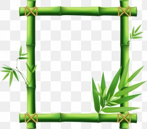 Bamboo Border - Picture Frame Bamboo Clip Art PNG