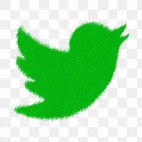 Social Media - Adams Elementary School Social Media Internet PNG