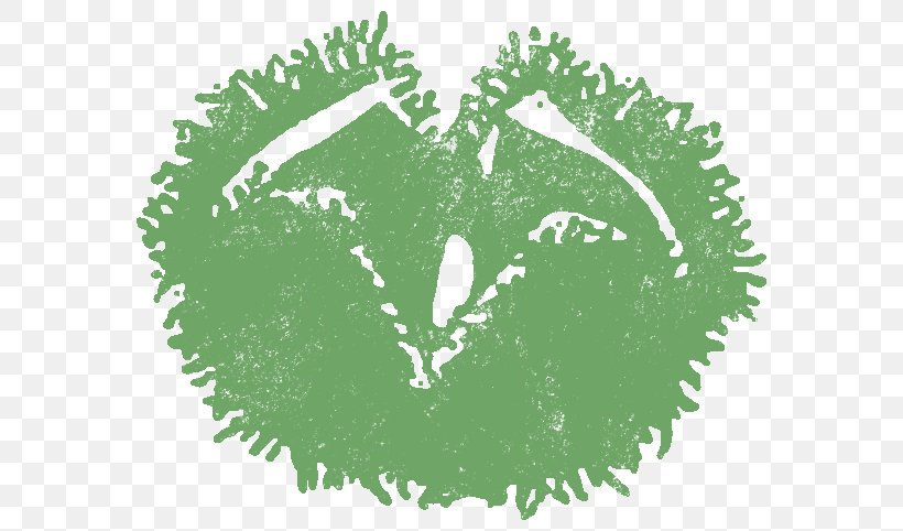 Green Leaf Graphics Font, PNG, 591x482px, Green, Grass, Leaf, Organism, Tree Download Free