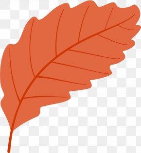 Plane Deciduous - Autumn Leaf Fallen Leaf Dead Leaf PNG