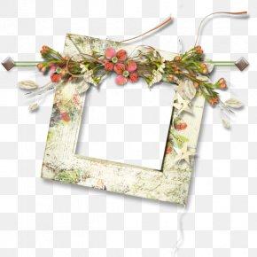 Plant Decorative Borders - Picture Frame Download Clip Art PNG