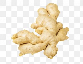 Fresh Ginger Photography - Root Vegetables Ginger Photography PNG