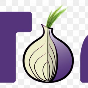 Onion - Tor Browser .onion Onion Routing Web Browser PNG