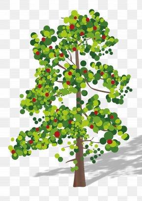 Tree Top - Tree Clip Art PNG